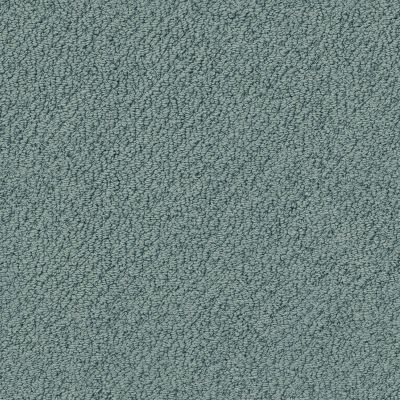 Shaw Floors Wishful Thinking Oceanside 00493_NA457