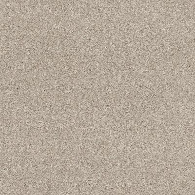 Shaw Floors Calm Embrace I Washed Linen 00103_NA458