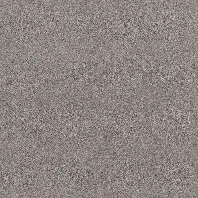 Shaw Floors Calm Embrace I Split Sediment 00104_NA458