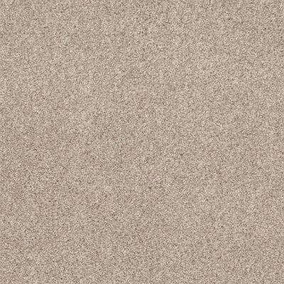Shaw Floors Calm Embrace I Kidskin 00109_NA458