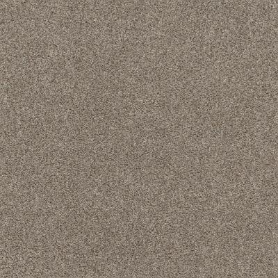 Shaw Floors Calm Embrace I Desert View 00701_NA458