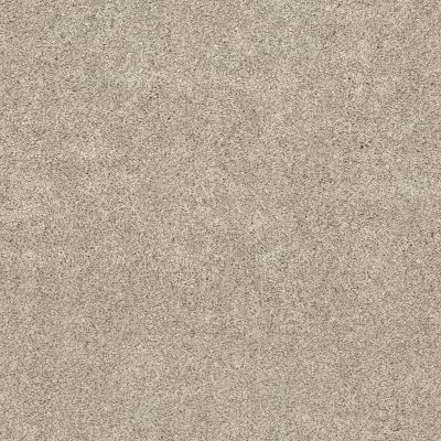 Shaw Floors Calm Embrace II Kidskin 00109_NA459