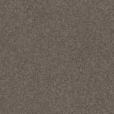 Shaw Floors Simple Charm I Antelope 00714_NA460