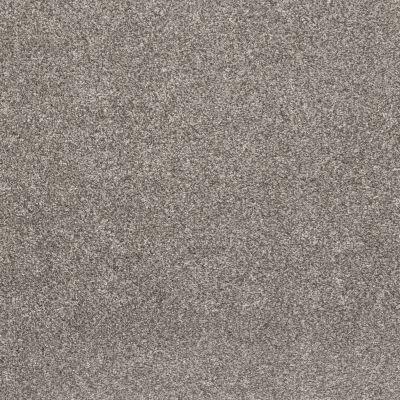 Shaw Floors Simple Charm II Washed Linen 00113_NA461