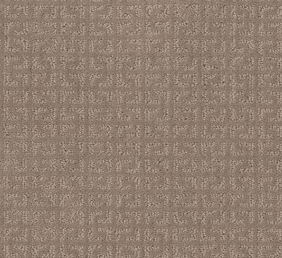 Shaw Floors Endless Charm Shadow 00109_NA463