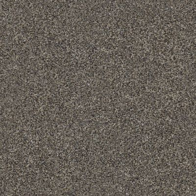Shaw Floors Out Of Reach III Beige Bisque 00110_NA474