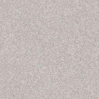 Shaw Floors Mine To Keep II Soft Fleece 00120_NA480