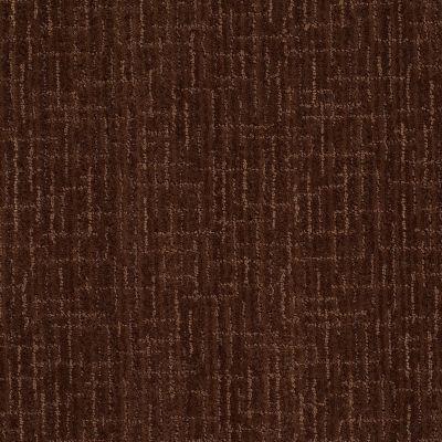 Anderson Tuftex Pattern Destination Collection Sonoma Creek Coffee Bean 00779_PN425