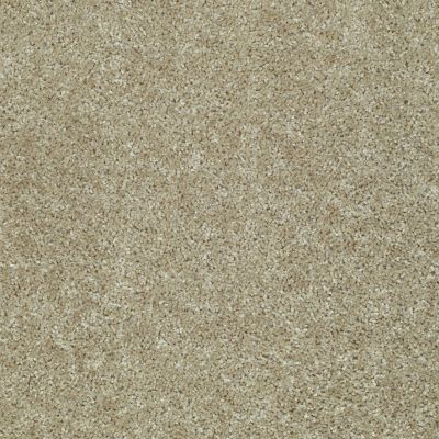 Shaw Floors Ever Again Nylon Eco Choice Walnut 00700_PS503
