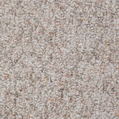 Shaw Floors Property Solutions Bestow 15′ Cliff Side 00702_PS538