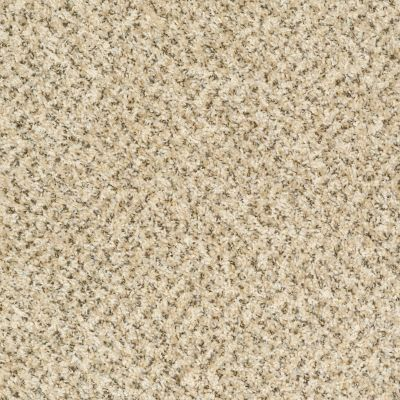 Shaw Floors Ever Again Nylon Eco Harvest First Light 00200_PS610