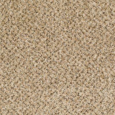 Shaw Floors Ever Again Nylon Eco Harvest Tavern 00201_PS610