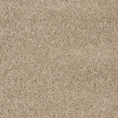 Shaw Floors Property Solutions Powerball Classic (s) Driftwood 00710_PS619
