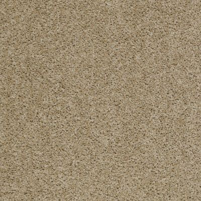 Shaw Floors Fusion Sd Builder Ultimate Dividend Fawn 00711_PS622