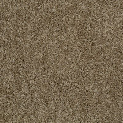 Shaw Floors Fusion Sd Builder Ultimate Dividend Driftwood 00712_PS622
