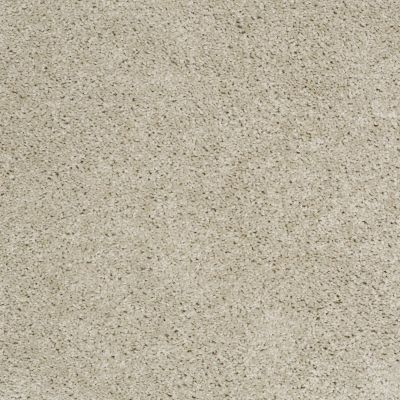 Shaw Floors Fusion Sd Builder Ultimate Investment Heavenly 00101_PS623