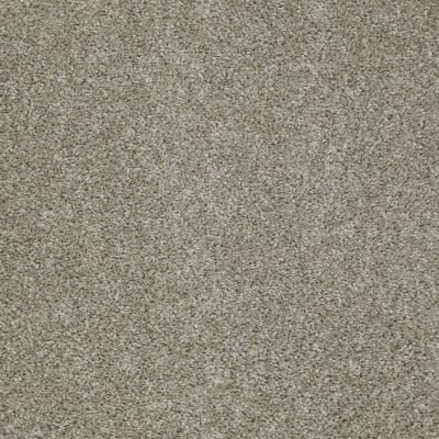 Shaw Floors Fusion Sd Builder Ultimate Foundation Morning Fog 00510_PS643