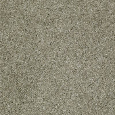 Shaw Floors Fusion Sd Builder Ultimate Statement Brushed Nickel 00520_PS644