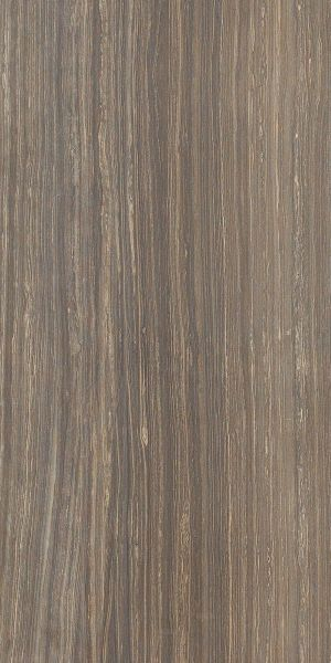 Shaw Floors Pulte Home Hard Surfaces Saluda 12×24 Glade 00730_PW559