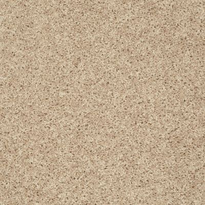 Shaw Floors Roll Special Px025 Soft Sand 00102_PX025