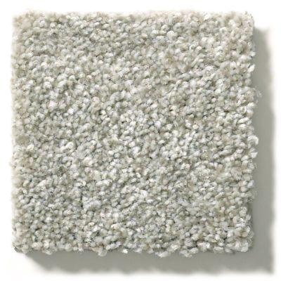 Shaw Floors Appel Soft Fleece 120T_PZ059