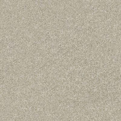Shaw Floors Appel Desert Light 121T_PZ059