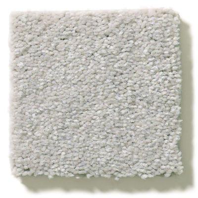 Shaw Floors Appel Platinum 500S_PZ059