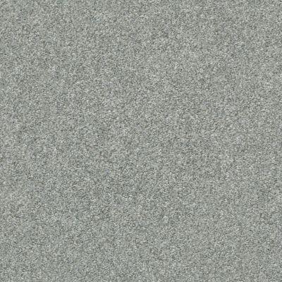 Shaw Floors Appel Sterling 520T_PZ059