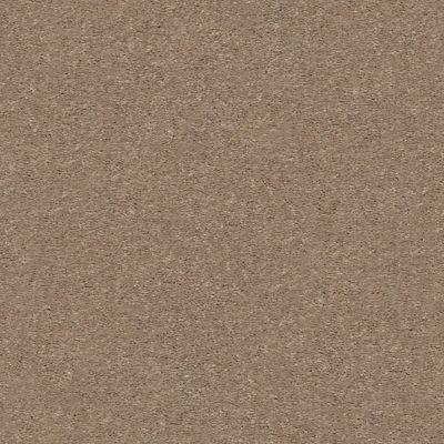 Shaw Floors Appel Cork 701S_PZ059