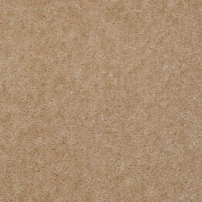 Shaw Floors Queen Patcraft Yukon Summer Tan 27142_Q0028