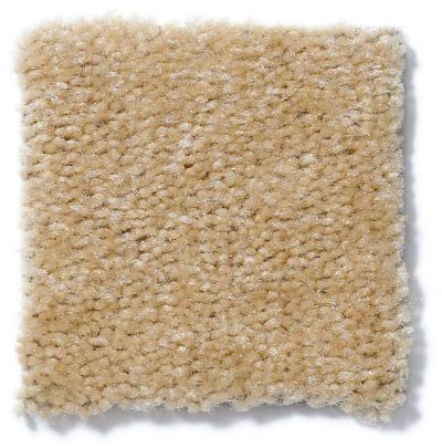 Shaw Floors Queen Matador Hemp Rope 60133_Q0060