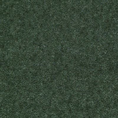 Shaw Floors Queen Matador Fairway 60331_Q0060