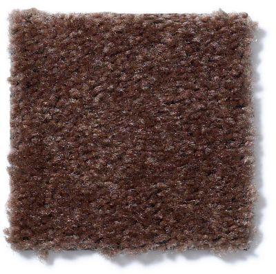 Shaw Floors Queen Matador Leather Brown 60774_Q0060