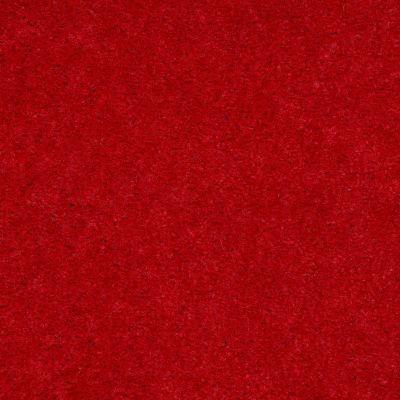 Shaw Floors Queen Matador Chinese Lacquer 60830_Q0060
