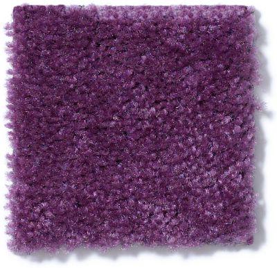 Shaw Floors Queen Matador Grape 60933_Q0060