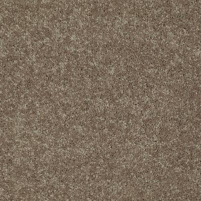 Shaw Floors Queen Knockout II 15′ Sequoia 75720_Q0776