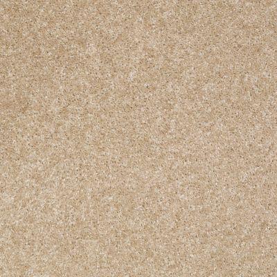 Shaw Floors SFA Centex Cashmere Sweater 00722_Q0995