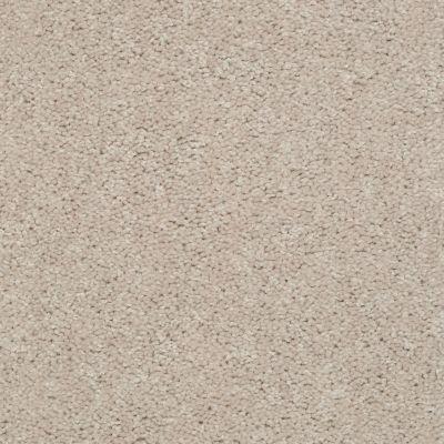 Shaw Floors Shaw Design Center Rumba 15′ Fleece 75103_Q1232