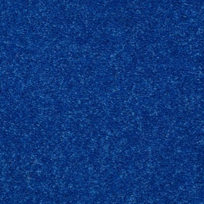 Shaw Floors Shaw Design Center Rumba 15′ Electric Blue 75453_Q1232