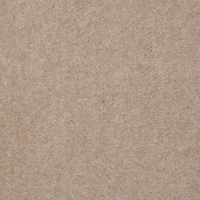 Shaw Floors Bandit II Gorgeous Ivory 00129_Q1386