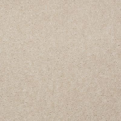 Shaw Floors Bandit II Face Powder 00130_Q1386