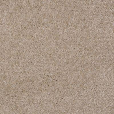Shaw Floors Bandit II Antique Taupe 00730_Q1386