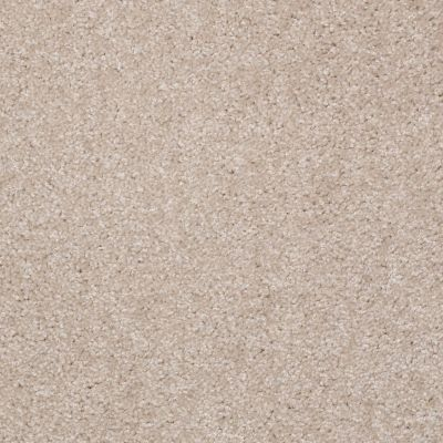 Shaw Floors Queen Ironworks Old Ivory 00116_Q1833