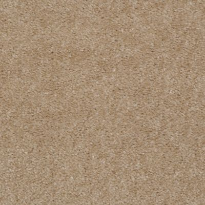 Shaw Floors Queen Zipp Fox Fur 00713_Q1861