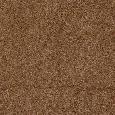 Shaw Floors Queen Zipp Parsnip 00730_Q1861
