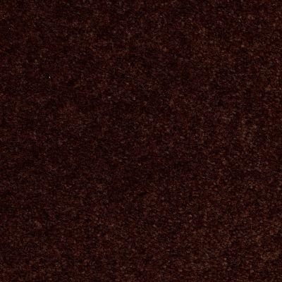 Shaw Floors Queen Zipp Tawny Suede 00761_Q1861