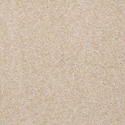 Shaw Floors Anso Premier Dealer Unique Style Nevada Sand 00113_Q2196