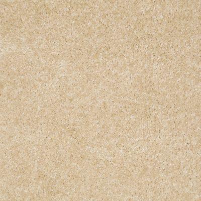 Shaw Floors Anso Premier Dealer Unique Style Sagebrush 00118_Q2196