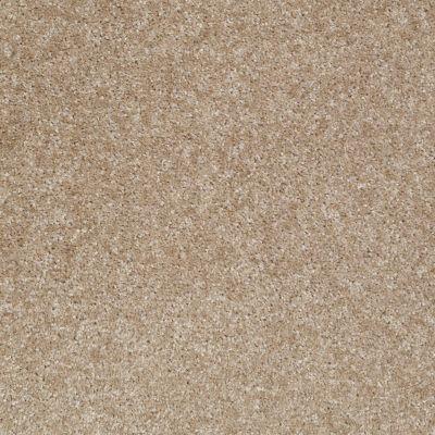Shaw Floors Anso Premier Dealer Unique Style Papoose 00716_Q2196