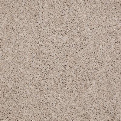 Shaw Floors Shaw Flooring Gallery Gibson Soft Shell 00103_Q259G